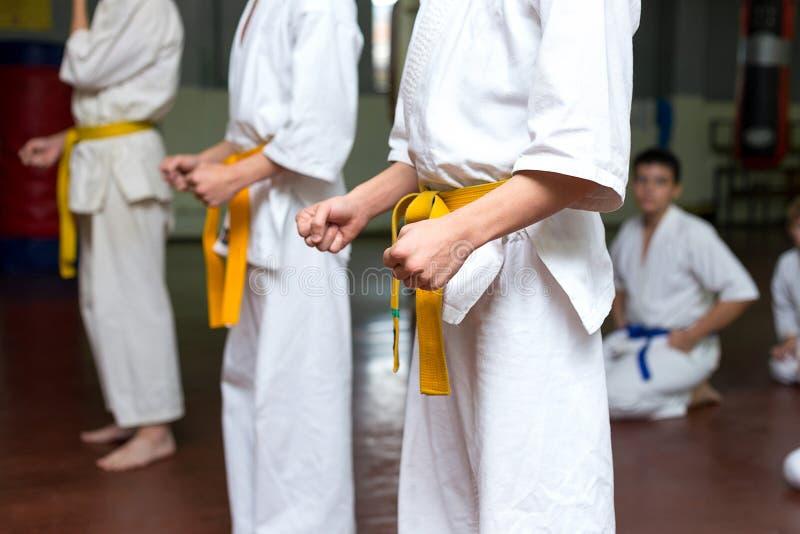 Gruppo di bambini su un addestramento di arti marziali fotografia stock