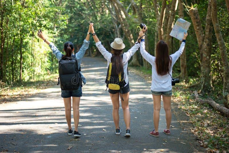 Gruppo di belle giovani donne che camminano nella foresta, fotografia stock