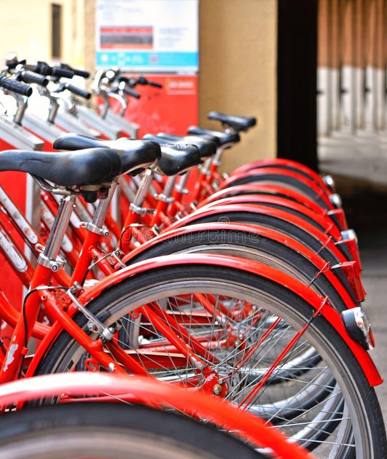 Gruppo di biciclette rosse classiche variopinte per affitto sulla via della città Padova, Italia immagine stock