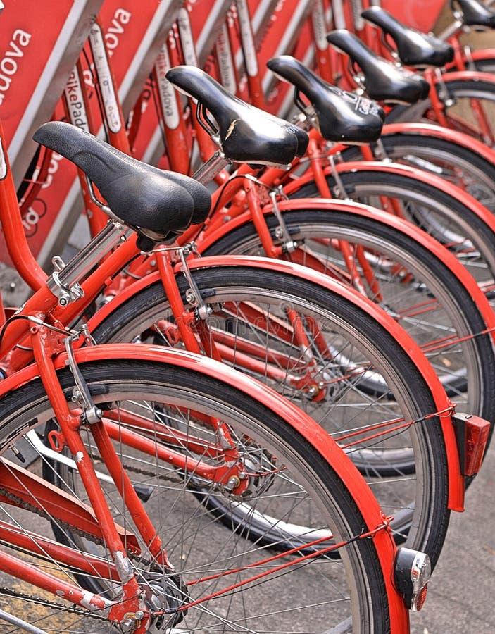 Gruppo di biciclette rosse classiche variopinte per affitto sulla via della città Padova, Italia fotografie stock libere da diritti