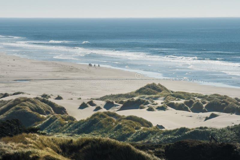 Gruppo di cavalieri sui loro cavalli e su uno stormo degli uccelli su una spiaggia fotografia stock