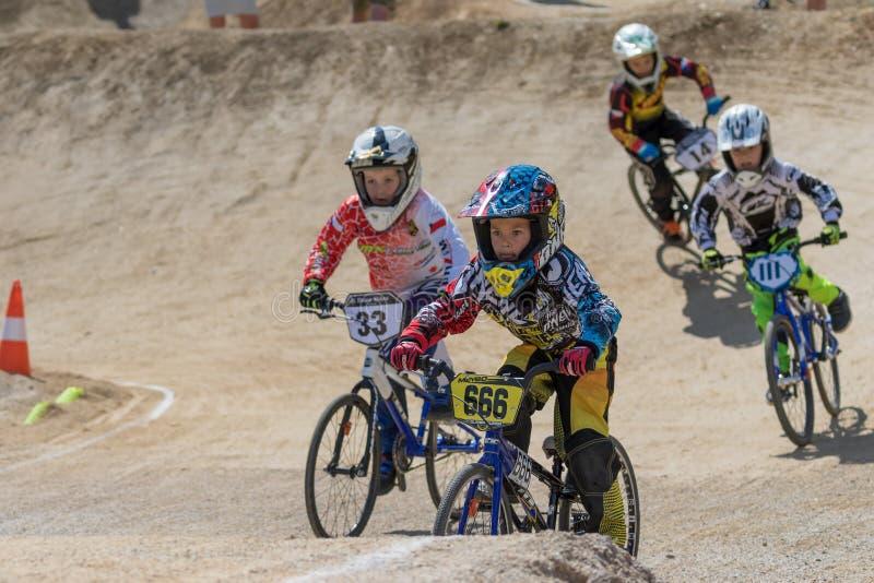 Gruppo di corridori della bici dei bambini fotografia stock