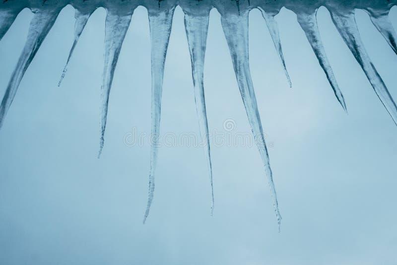 Gruppo di ghiaccioli contro un cielo di sera di inverno fotografia stock