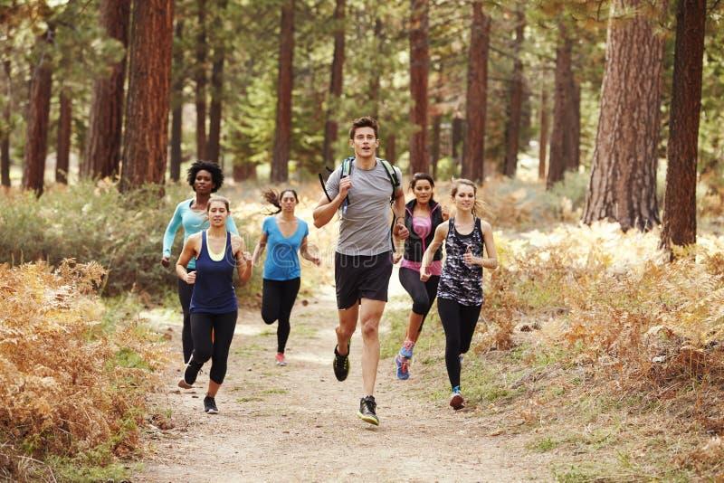 Gruppo di giovani amici adulti che corrono in una foresta immagini stock libere da diritti