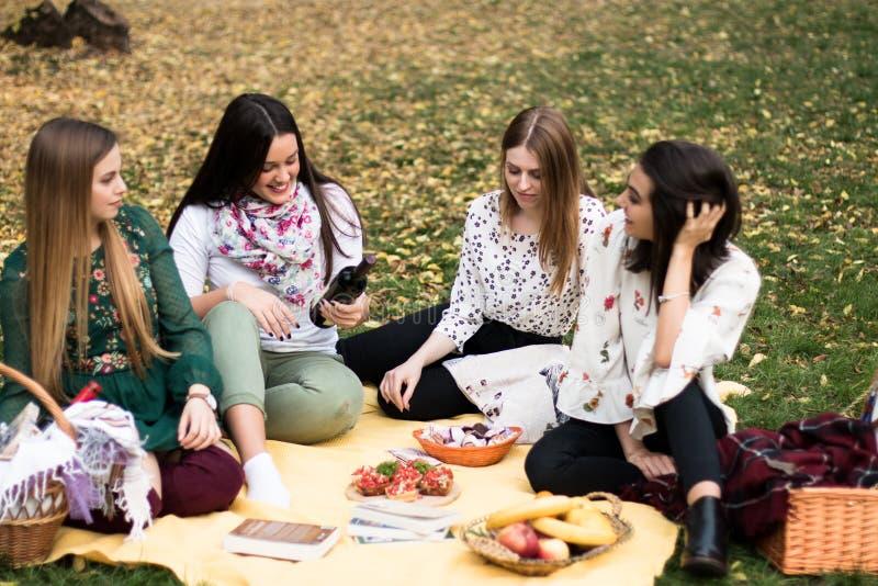 Gruppo di giovani donne che hanno un picnic nel parco fotografie stock libere da diritti