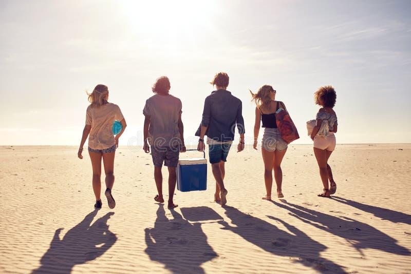 Gruppo di giovani sulla spiaggia che porta una scatola più fresca immagini stock