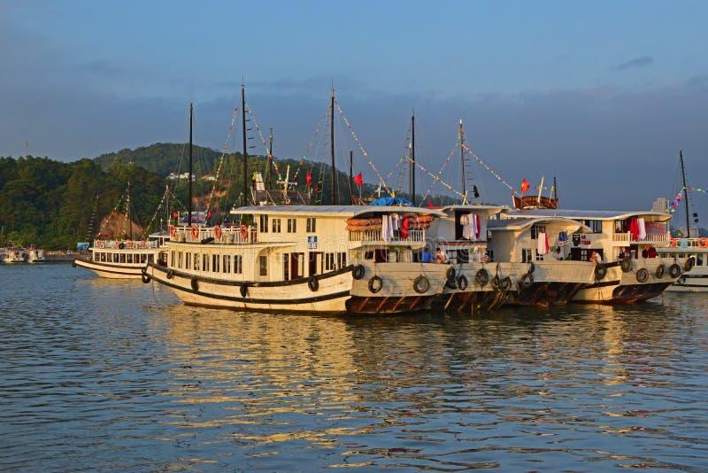 Gruppo di grandi crogioli turistici di ciarpame senza aggancio della vela nella baia di Halong fotografia stock
