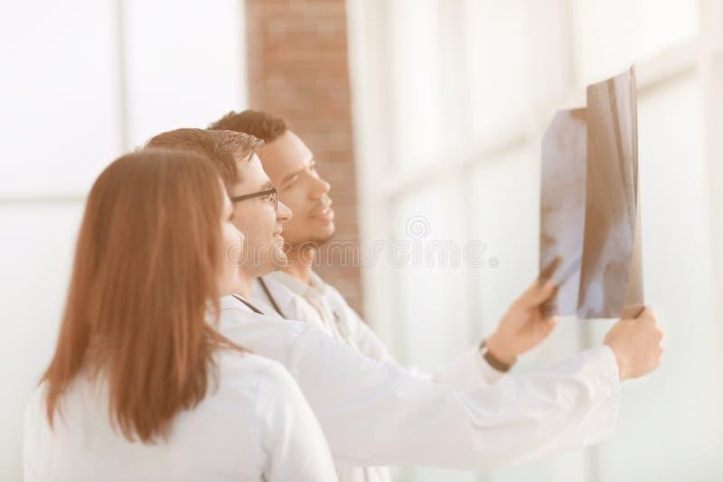 Gruppo di medici che discutono i raggi x del paziente immagine stock libera da diritti