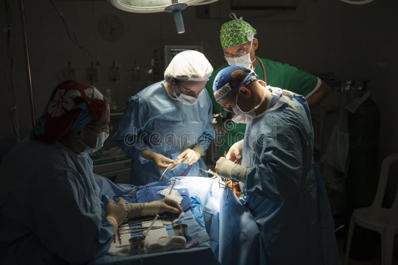 Gruppo di medici che realizza intervento chirurgico nella sala operatoria moderna luminosa immagine stock