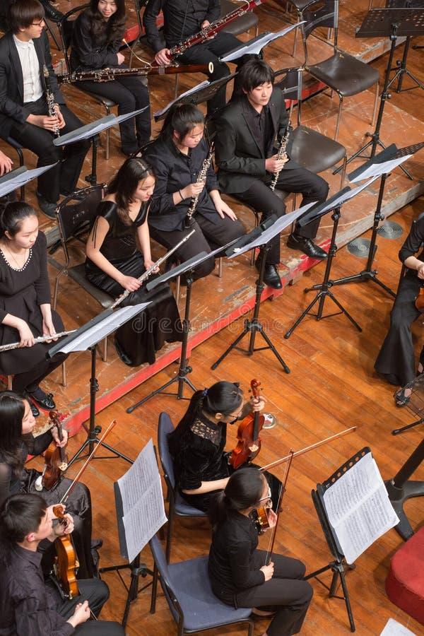 Gruppo di persone che giocano in un concerto di musica classica, porcellana immagine stock libera da diritti