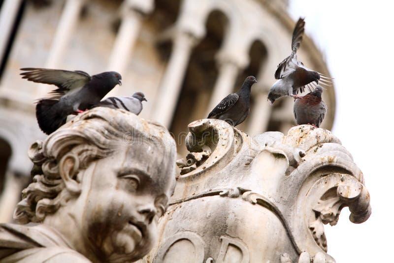 Gruppo di piccioni sulla statua fotografia stock libera da diritti