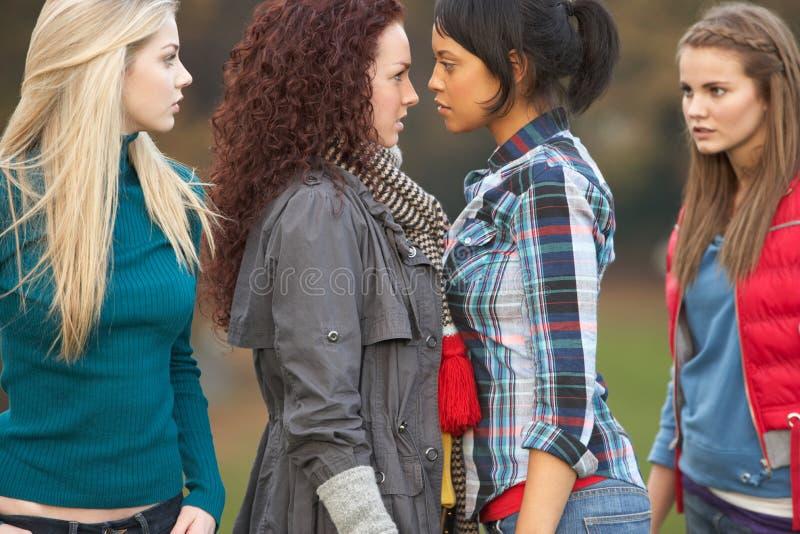 Gruppo di ragazze polemiche dell'adolescente fotografia stock