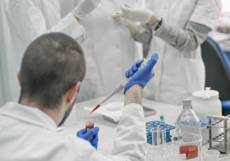 Gruppo di scienziati che lavorano con i campioni liquidi della provetta fotografie stock libere da diritti
