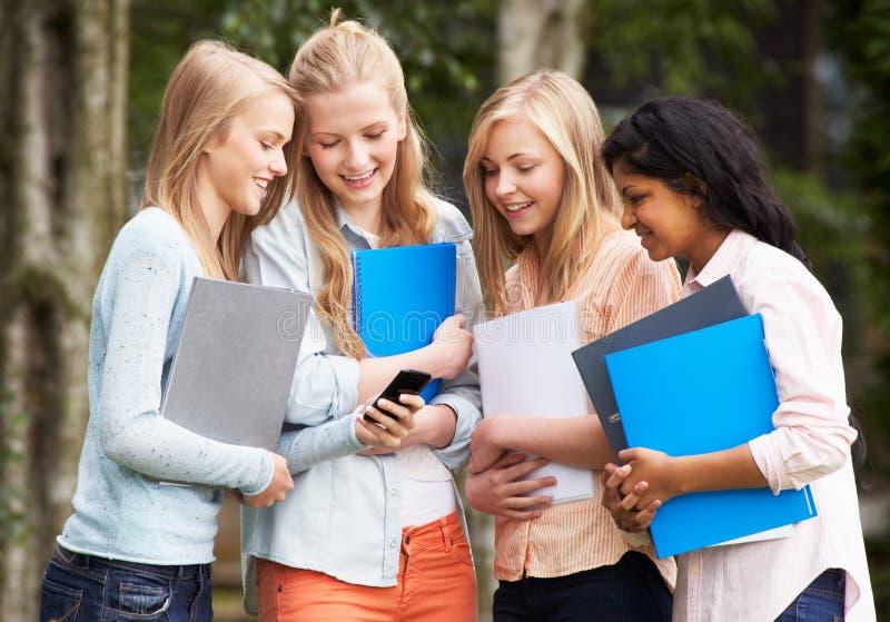 Gruppo di studenti adolescenti femminili con il telefono cellulare all'aperto immagini stock