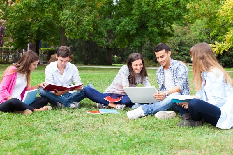 Gruppo di studenti che studiano all'aperto fotografie stock