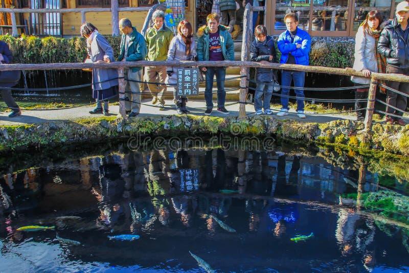 Gruppo di turisti sul ponte e là di riflessioni nell'acqua fotografia stock libera da diritti