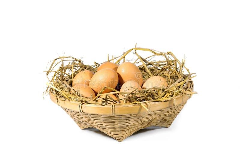 Gruppo di uova con paglia fotografia stock