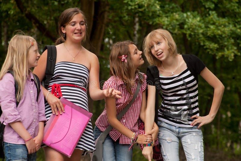 Gruppo felice della ragazza nella sosta immagine stock libera da diritti