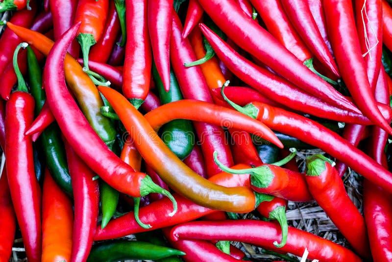 Gruppo rosso fresco del peperoncino sulla vista superiore immagine stock libera da diritti