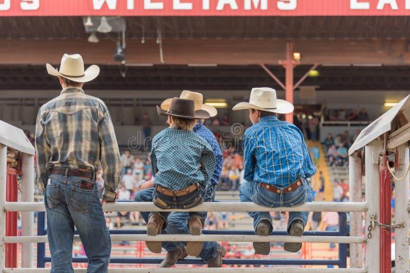 Grupy chłopiec w kowbojskich kapeluszach siedzą na korytkach i zegarek panice fotografia stock
