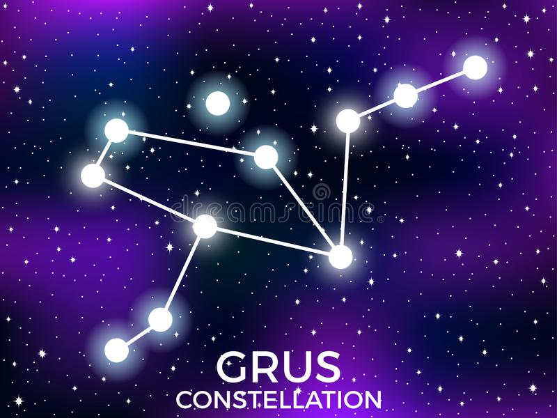 Grus constellation. Starry night sky. Cluster of stars and galaxies. Deep space. Vector. Illustration vector illustration
