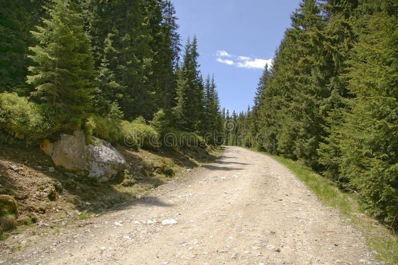 grusbergväg arkivbild