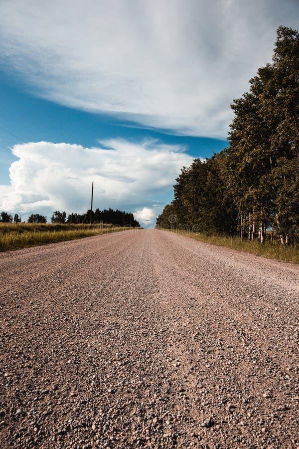 Gruskantväg i landet för röda hjortar, Alberta, Kanada Deserterat inget omkring, öppet land royaltyfri foto