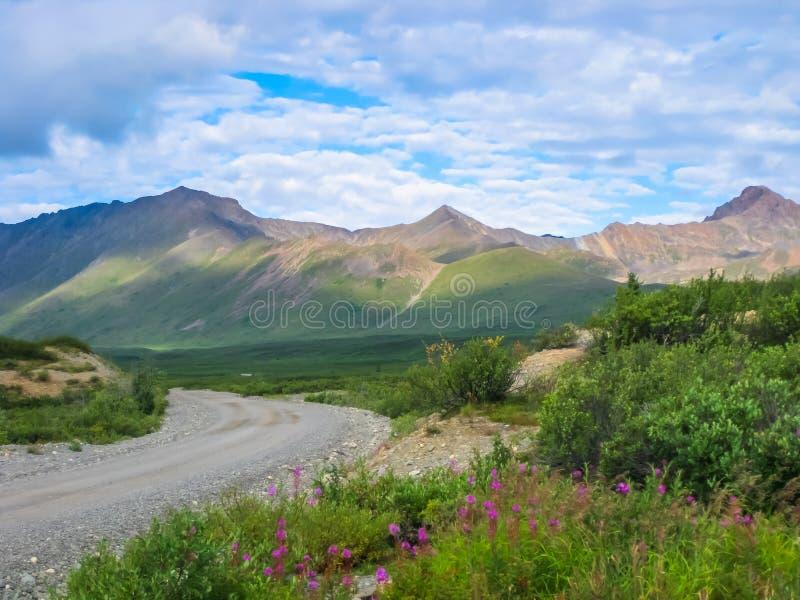 Grusväg Denali nationalpark, Alaska arkivbild