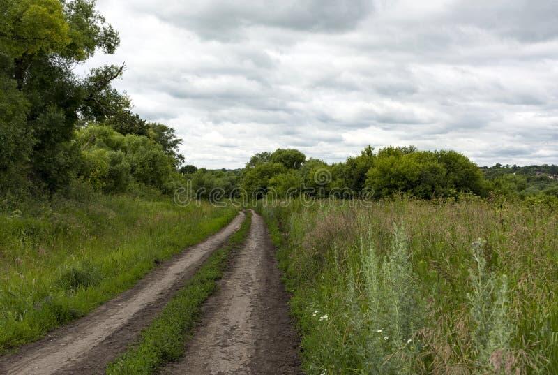 Grusväg i bygden, gräs, träd, himmel med moln arkivfoton