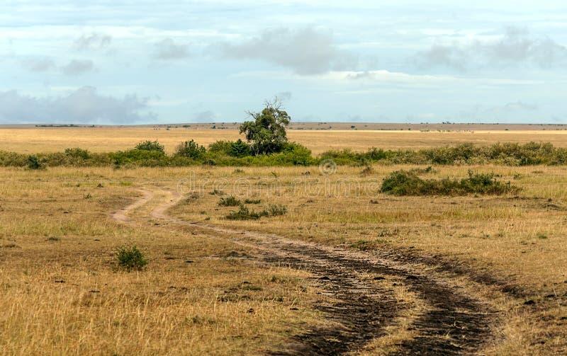 Grusväg i den afrikanska savannahen fotografering för bildbyråer
