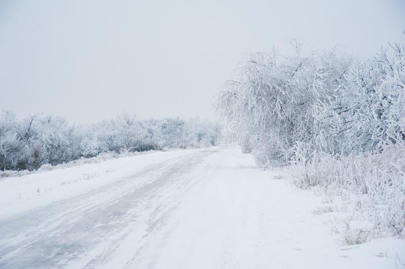Grusväg i skogen i vinter arkivfoto