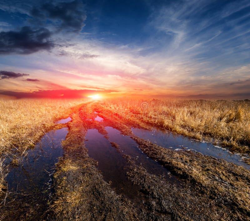 Grusväg i stäpp med solnedgång royaltyfri fotografi