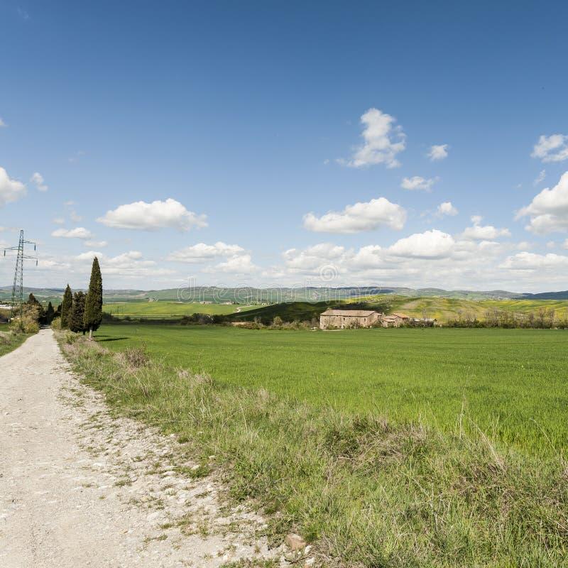 Grusväg mellan ängar i Italien arkivbild