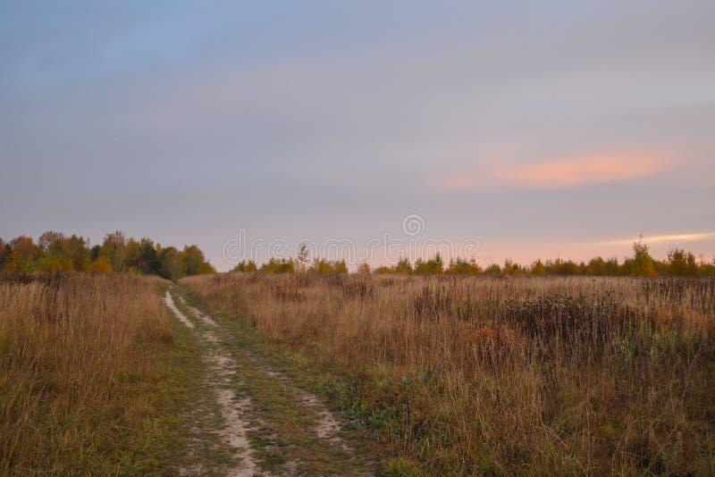 Grusvägen går till och med ett fält till en skogotta Höst Ryssland arkivfoton
