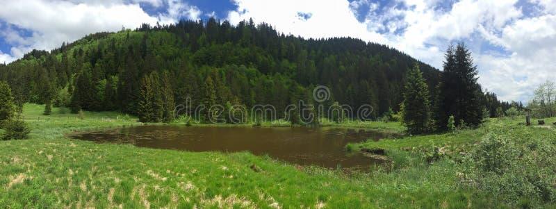 Gruyere natural del lago del pantano de la montaña foto de archivo libre de regalías