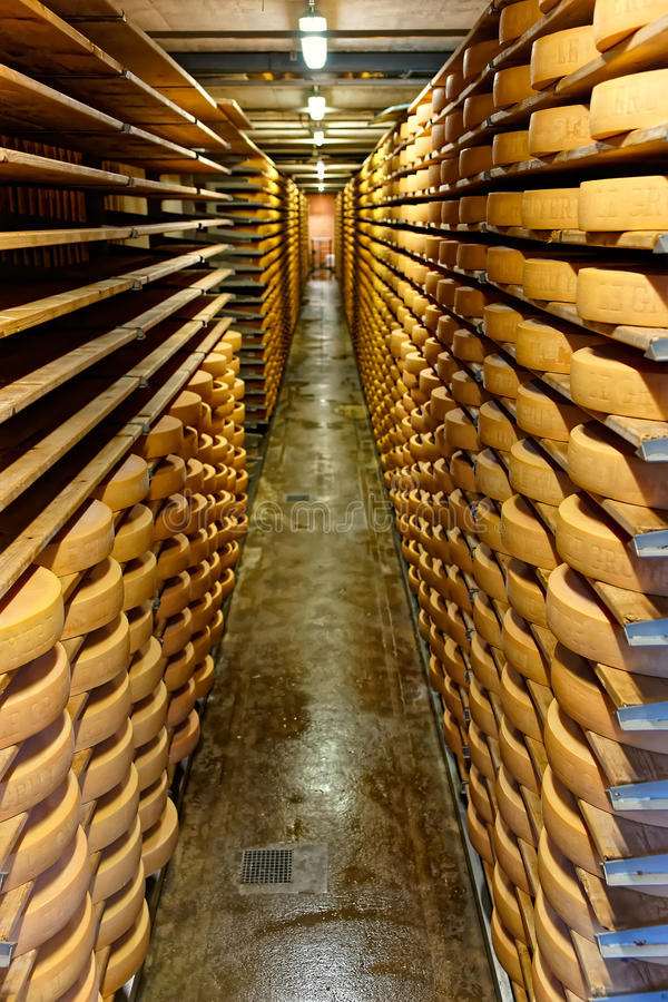 Gruyereost som mognar i en källare av Maison du Gruyere mejeri arkivfoto