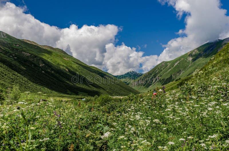 Gruzja, Svaneti, wędrówka od Ushguli Shkhara lodowiec Piękny widok dolina, natura i podróż, barwiący, zdjęcia royalty free