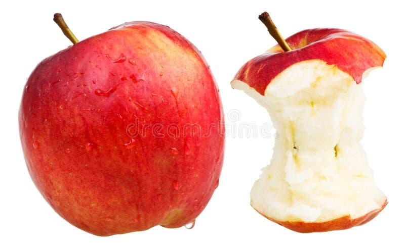 Gryźć jabłczany i cały zamożny jabłko obrazy royalty free