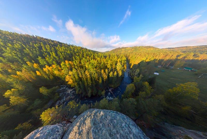 Gry i höstskogen uppifrån av vagga arkivfoto