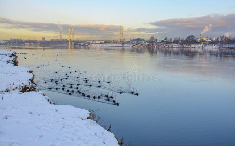 Gry i St Petersburg i området av fiske arkivbilder