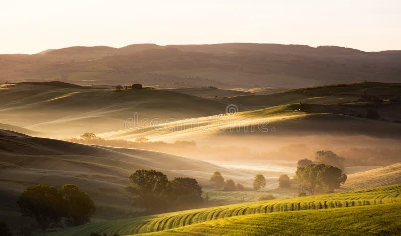 Gry i Tuscany, den Val d'Orciaen, Italien royaltyfria foton