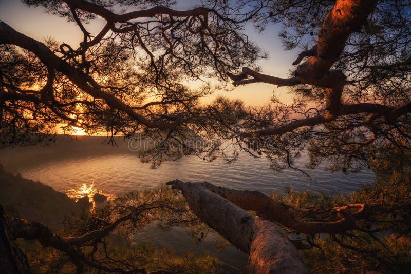 Gry nära byNovyi Svit det nya ljuset arkivfoto