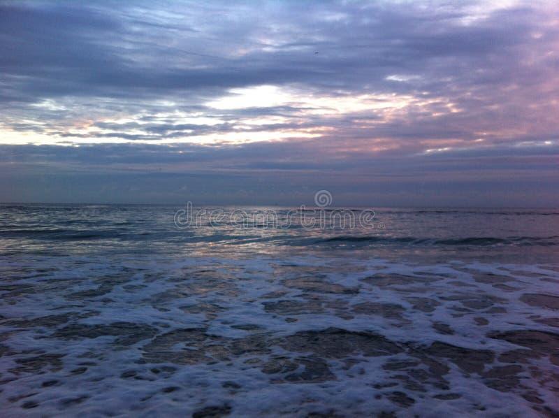 Gry på havet, det ` s en härlig sikt royaltyfri foto