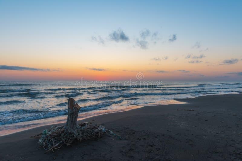 Gry på havet, gammalt wood hinder på kust royaltyfri foto