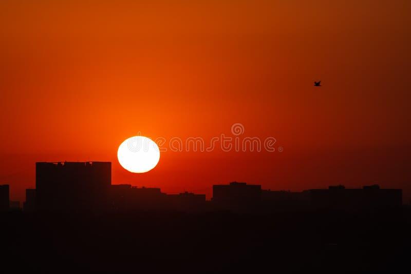 Gry solen på bakgrunden av avlägsna byggnader fotografering för bildbyråer