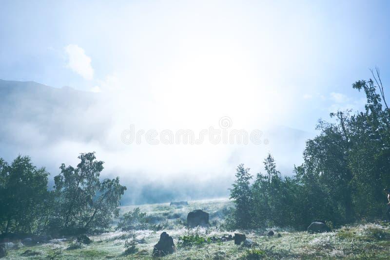 Gry soluppgång på en flod i bergen på bakgrund och skogen överst royaltyfria bilder