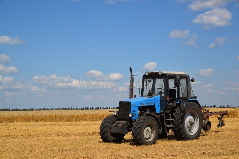 Gryazi Ryssland - Augusti 2 2017 Vitryssland är den rullade traktoren som produceras efter 1950 på den Minsk traktorväxten i Vitr royaltyfria foton