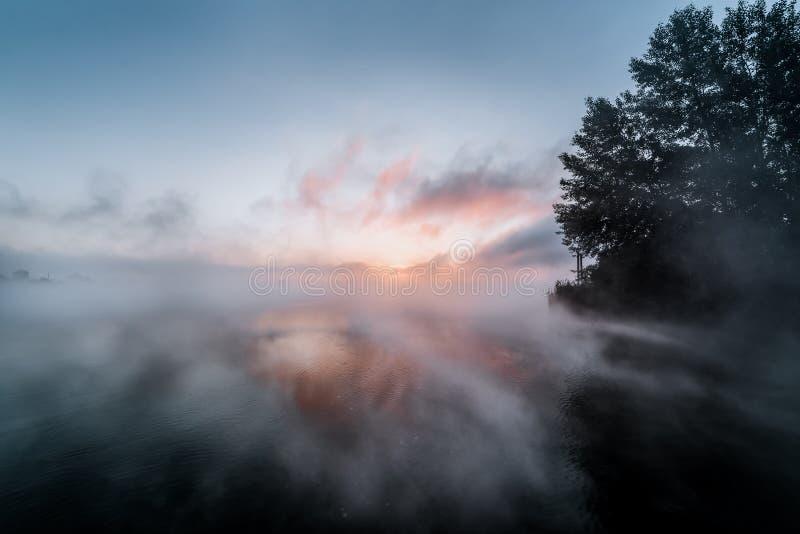 Gryning över sjön, försommarmorgon arkivbild