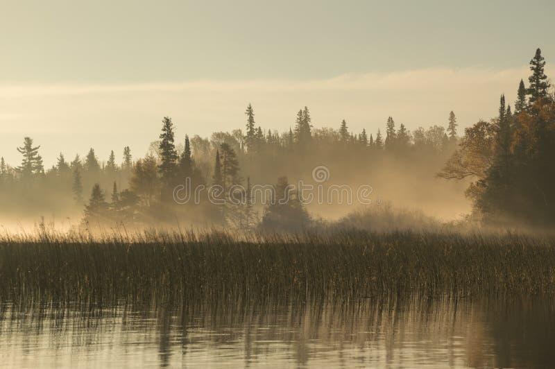 Gryning på floden i nordliga Ontario royaltyfri bild