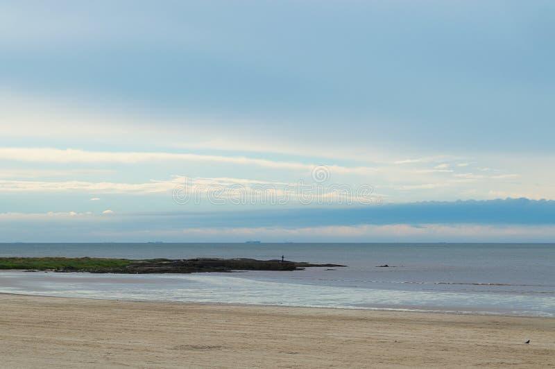 Gryning på kusten royaltyfria bilder